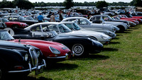 A ROW OF CLASSIC JAGUAR CARS IN THE CAR PARK AT GOODWOOD REVIVAL
