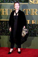 LESLEY MANVILLE ATTENDS LONDON EVENING STANDARD THEATRE AWARDS  AT THE OLD VIC, LONDON, UK ON 22/11/2015
