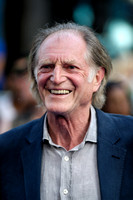 DAVID BRADLEY ATTENDS WORLD PREMIERE OF THE WORLD'S END AT EMPIRE LEICESTER SQUARE, LONDON, UK ON 10/07/2013